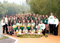 WHS Volleyball 2015